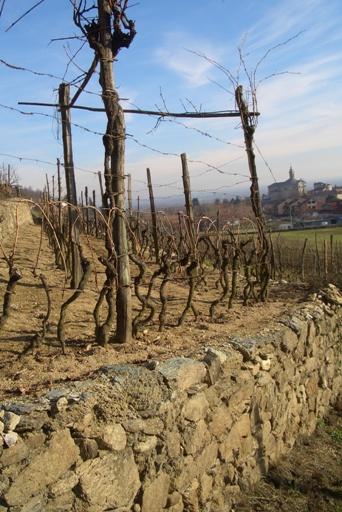 Strada reale dei vini torinesi for Suggerimenti per la costruzione della propria casa